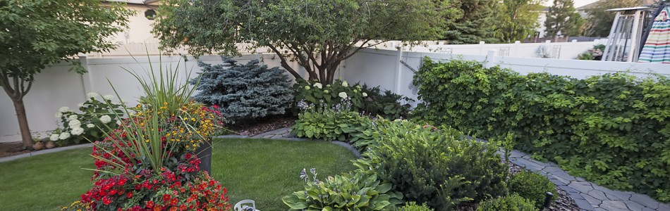 Elegant Courtyard project after Image